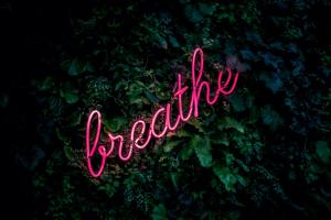 Use your breathing for meditation.